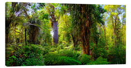 Canvas print  New Zealand Waipoua Forest - Michael Rucker