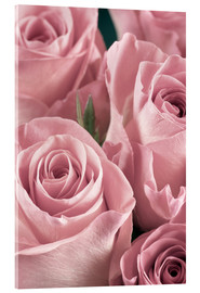 Acrylic print  Bunch of pale pink roses