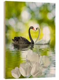 Wood print  Two swans in love