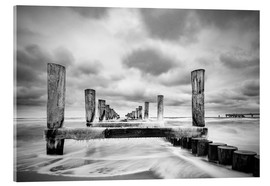 Acrylic glass  Groynes on the Baltic Sea coast in Zingst, Germany - Rico Ködder
