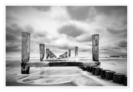 Premium poster Groynes on the Baltic Sea coast in Zingst, Germany