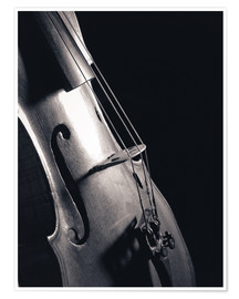 Premium poster Violin on black background