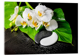 Acrylic glass  White orchids and Yin-Yang stones
