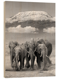 Wood print  Elephant herd at Kilimanjaro