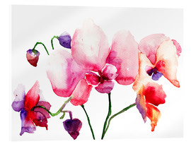 Acrylic print  Pink orchids