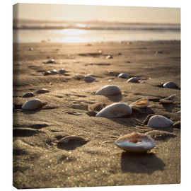 Canvas print  sun shells - Thomas Klinder