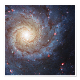 Premium poster  Galaxies - beauties of space - Christian Müringer