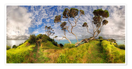 Poster  Russell - New Zealand - Bay of Island - Michael Rucker