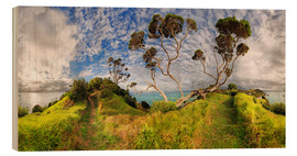 Wood print  Russell - New Zealand - Bay of Island - Michael Rucker