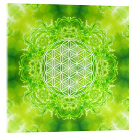 Acrylic print  Flower of Life - Healing Power of Nature - Dolphins DreamDesign