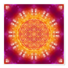 Dolphins DreamDesign - Flower of Life - Abundance