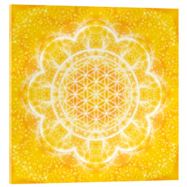 Acrylic glass  Flower of life - light power - Dolphins DreamDesign