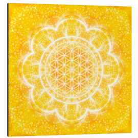 Alu-Dibond  Flower of Life - Light Power - Dolphins DreamDesign