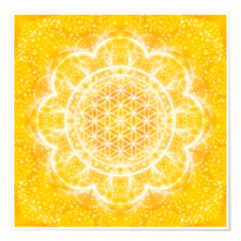 Dolphins DreamDesign - Flower of Life - Light Power