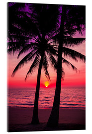 Acrylic print  Palm trees and tropical sunset