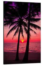 Aluminium print  Palm trees and tropical sunset