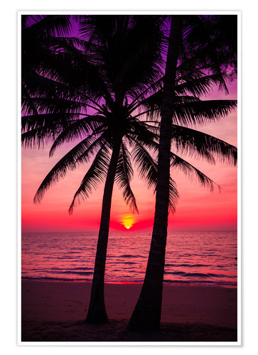 Premium poster Palm trees and tropical sunset