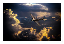 Premium poster  The Graceful Spitfire - airpowerart