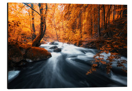 Alu-Dibond  Autumn woods and creek - Oliver Henze