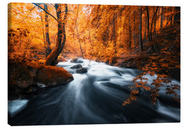 Canvas print  Autumn woods and creek - Oliver Henze