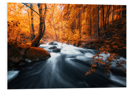 Foam board print  Autumn woods and creek - Oliver Henze