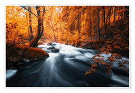 Premium poster Autumn woods and creek