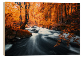 Wood print  Autumn woods and creek - Oliver Henze