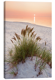Canvas print  Ocean solitude - Dave Derbis