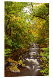 Acrylic glass  Bode Harz Autumn - Dave Derbis