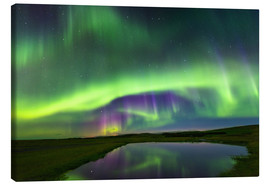 Canvas print  Northern Lights - Dave Derbis