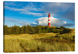 Canvas  Lighthouse on the North Sea island Amrum - Rico Ködder