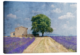 Joachim G. Pinkawa - Provence picturesque