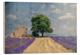 Wood  Provence picturesque - Joachim G. Pinkawa