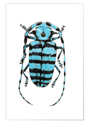 Poster Beetle