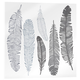 Acrylic print  Feathers on white