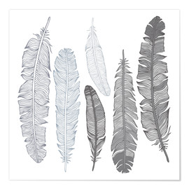 Premium poster  Feathers on white