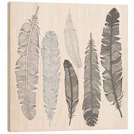 Wood  Feathers on white