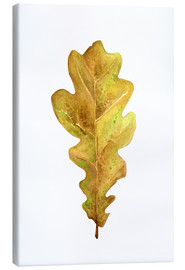 Canvas print  Oak Leaf - RNDMS