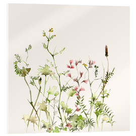 Acrylic print  Wild flower meadow - Dearpumpernickel
