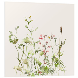 Foam board print  Wild flower meadow - Dearpumpernickel