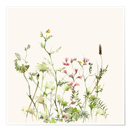 Premium poster  Wild flower meadow - Dearpumpernickel