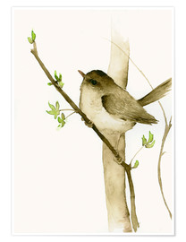 Premium poster  Little songbird - Dearpumpernickel