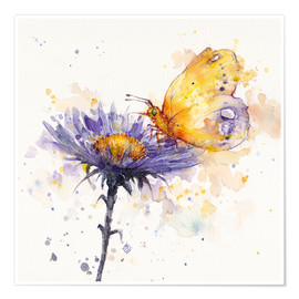 Premium poster  Flowers & flutters (butterfly & flower) - Sillier Than Sally