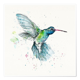 Sillier Than Sally - Hummingbird Flurry