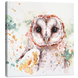 Canvas print  Barn Owl - Sillier Than Sally