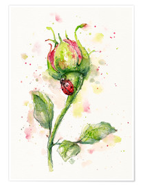 Premium poster  Ladybug Lane (ladybird on rose) - Sillier Than Sally