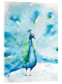 Acrylic print  Peacocking Around - Sillier Than Sally