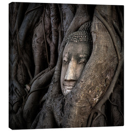 Canvas print  Buddha head in Thailand - Sebastian Rost