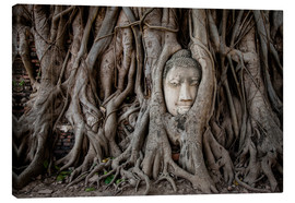 Canvas print  Buddha head in Ayutthaya - Sebastian Rost