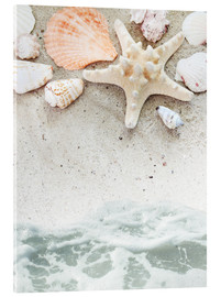 Sea Beach with starfish